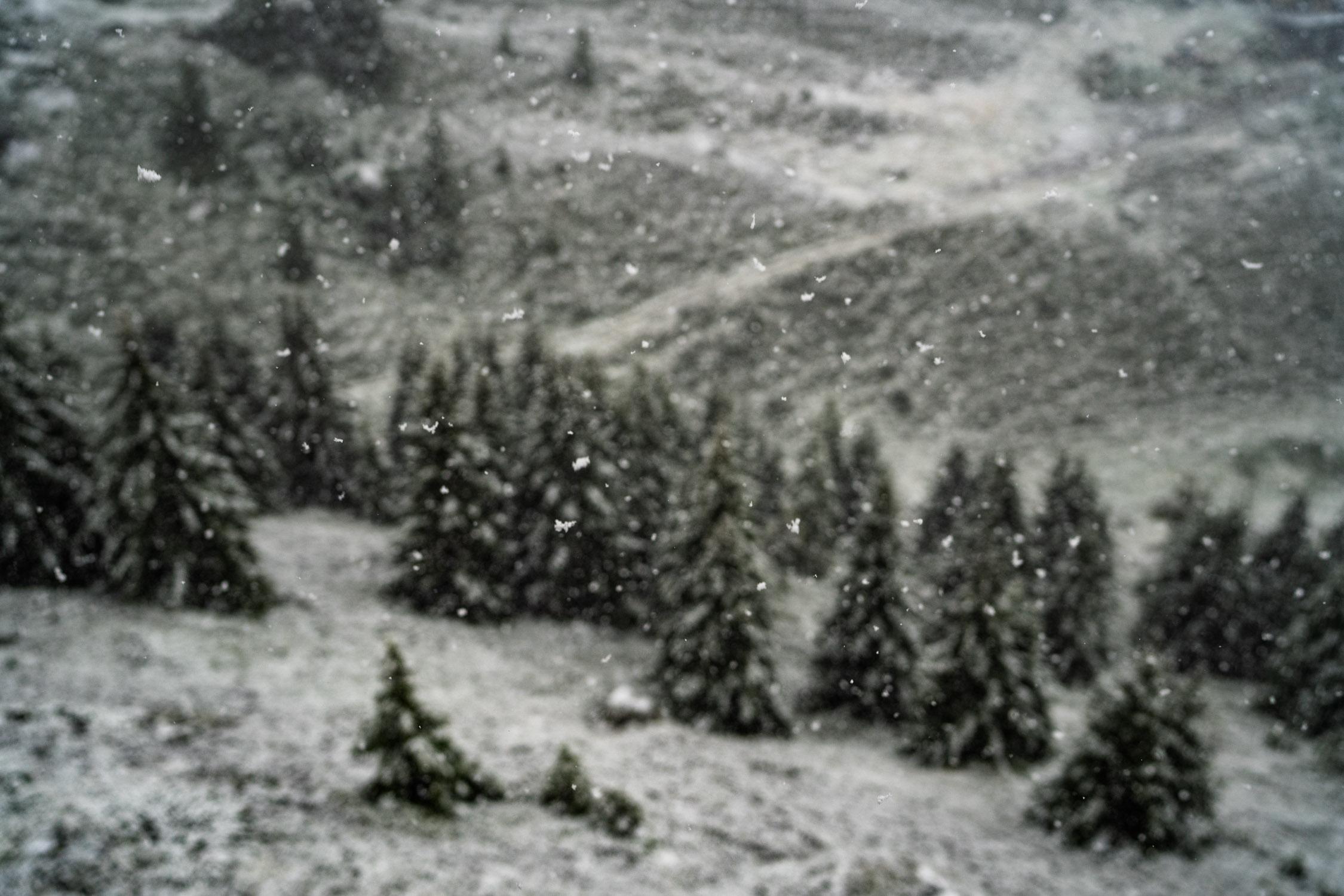 Vallende sneeuw fotograferen